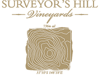 Surveyors Hill Logo